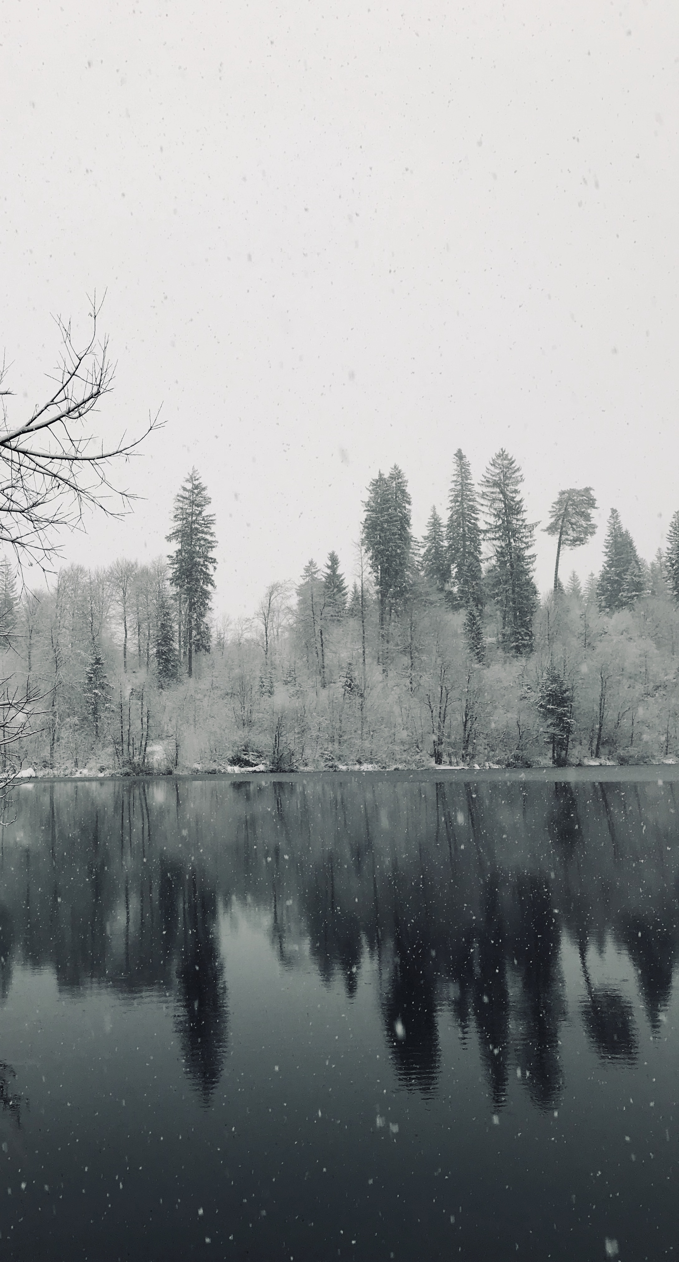 Crestasee Winter